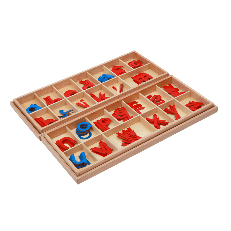 Montessori Materials Moveable Alphabet