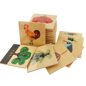 Plants and Animals Puzzle Montessori equipment materials